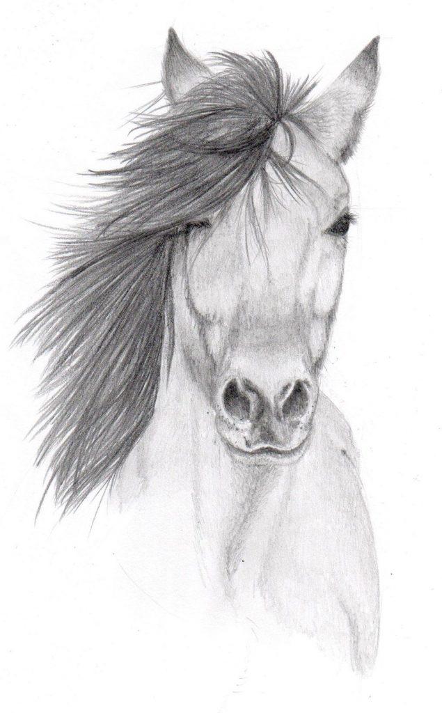 dibujo lapiz caballo
